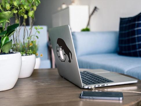 Гайд: как выбрать ноутбук и на что следует обращать внимание в первую очередь